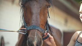 A jovem mulher libera o cavalo Feche acima do tiro filme