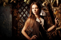 Jovem mulher luxuosa da beleza em uma floresta místico Foto de Stock