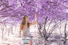 Jovem mulher na bicicleta na floresta do rosa da fantasia imagem de stock