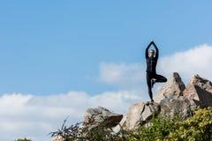 jovem mulher na ioga praticando da pose da árvore fora imagens de stock royalty free