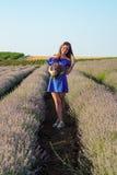 Jovem mulher no campo da alfazema Foto de Stock