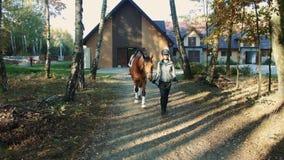Jovem mulher no capacete que anda com o cavalo no chicote de fios fora do estábulo para começar montar video estoque