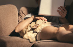 Jovem mulher no desgaste home acolhedor que relaxa no sofá com um cão do sono em seu regaço, guardando a tabuleta e a leitura Foto de Stock