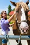 Jovem mulher no estábulo ou salgueiro com cavalo Foto de Stock Royalty Free