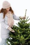 A jovem mulher no inverno guarda uma árvore de Natal fresca fotos de stock royalty free