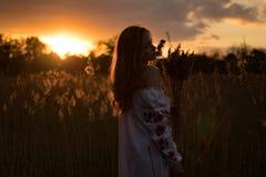 A jovem mulher no nacional ucraniano bordou caminhadas da camisa através do prado Fotografia de Stock Royalty Free