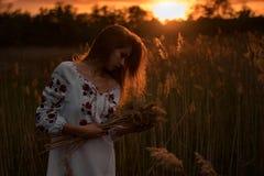 A jovem mulher no nacional ucraniano bordou caminhadas da camisa através do prado no por do sol Imagens de Stock