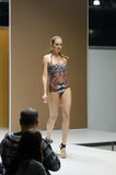 Jovem mulher no roupa de banho com uma expo sarapintado de Lingrie do desfile de moda do leão da cópia Foto de Stock Royalty Free
