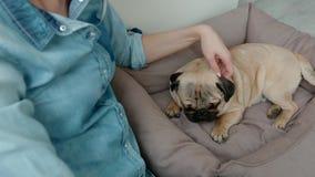 A jovem mulher pet seu cão que senta-se no assoalho video estoque
