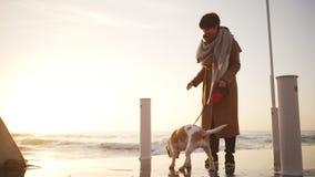 Jovem mulher que alimenta seu cão, trocas de carícias ele perto do beira-mar e sorrindo no movimento lento video estoque