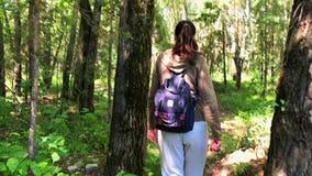 Jovem mulher que anda na floresta video estoque