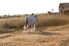 Jovem mulher que anda uma estrada com cavalo Fotografia de Stock Royalty Free