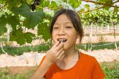 Jovem mulher que come uvas Imagens de Stock