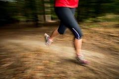 Jovem mulher que corre fora em uma floresta fotos de stock royalty free