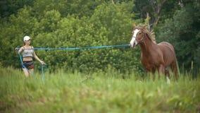 Jovem mulher que corre no campo do verão com um cavalo filme