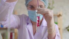 Jovem mulher que deixa cair o líquido vermelho em um tubo de ensaio com uma pipeta de vidro longa em um laboratório químico mo le vídeos de arquivo
