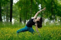 Jovem mulher que faz a ioga em uma floresta verde Foto de Stock