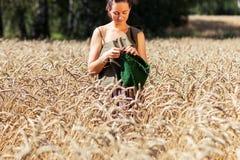 Jovem mulher que faz malha no campo de trigo fotografia de stock