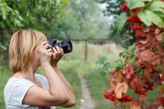 Jovem mulher que guarda a câmara digital e que toma imagens do viburn Foto de Stock Royalty Free