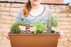 Jovem mulher que guarda o potenciômetro de ervas aromáticas imagem de stock