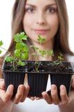 Jovem mulher que guarda a planta, broto do aipo Imagem de Stock