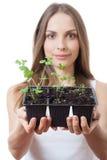 Jovem mulher que guarda a planta, broto do aipo Fotos de Stock