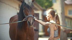 Jovem mulher que limpa um cavalo com água em um dia ensolarado na exploração agrícola animal video estoque
