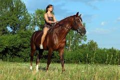 Jovem mulher que monta o cavalo de Trakehner Imagens de Stock Royalty Free