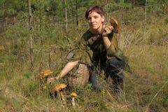 Jovem mulher que recolhe cogumelos Imagem de Stock Royalty Free