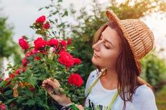 Jovem mulher que recolhe flores no jardim Menina que cheira e que corta rosas fora Conceito de jardinagem fotos de stock royalty free