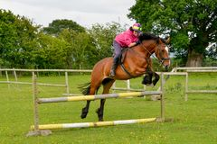 A jovem mulher que salta sobre uma cerca colorida em seu cavalo imagens de stock