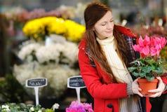 Jovem mulher que seleciona flores frescas Foto de Stock Royalty Free