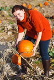 Jovem mulher que trabalha no campo da abóbora Imagem de Stock Royalty Free