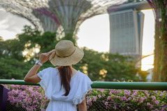 Jovem mulher que viaja com vestido e o chap?u brancos, viajante asi?tico que olha ao supertree em jardins pela ba?a em Singapura  fotos de stock