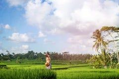 Jovem mulher que viaja em Ásia, andando com a trouxa do rattan em almofadas de arroz durante a estação das chuvas em Bali, liberd Imagens de Stock