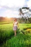 Jovem mulher que viaja em Ásia, andando com a trouxa do rattan em almofadas de arroz durante a estação das chuvas em Bali, liberd Foto de Stock Royalty Free
