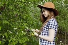 A jovem mulher recolhe flores selvagens na floresta Fotografia de Stock Royalty Free