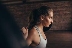 Jovem mulher saudável no gym que exercita com barbell imagens de stock