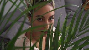 Jovem mulher sensual bonita com os olhos grandes que olham através das folhas da planta video estoque