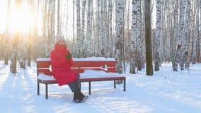 A jovem mulher senta-se no banco no parque pictórico da cidade com os vidoeiros no inverno filme