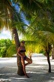 Jovem mulher sob a palmeira na praia tropical Fotos de Stock