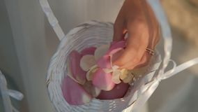 A jovem mulher toca nas pétalas cor-de-rosa com mão na sala dentro filme