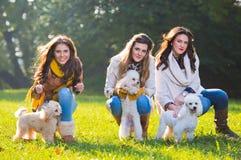 Jovem mulher três com seus cães de estimação Imagem de Stock Royalty Free