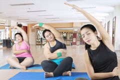 A jovem mulher treina a ioga duas mulheres excessos de peso Foto de Stock Royalty Free