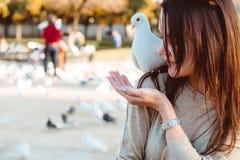 A jovem senhora alimenta pombos no quadrado da cidade foto de stock