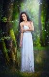 Jovem senhora bonita que veste um vestido branco longo elegante que aprecia os feixes da luz celestial em sua cara em madeiras en Fotos de Stock Royalty Free