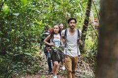 Jovens diversos que trekking em uma floresta tropical fotografia de stock royalty free