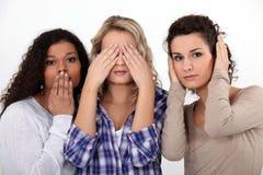 Jovens mulheres Fotografia de Stock