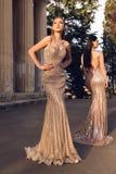 Jovens mulheres bonitas com cabelo escuro no dresse luxuoso da noite fotos de stock royalty free
