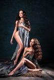 Jovens mulheres bonitas dos gêmeos com composição natural e o penteado que levantam despido coberto com o pano cinzento Imagem de Stock